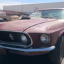 Mustang V8 C-code 302 , FASTBACK Mach1